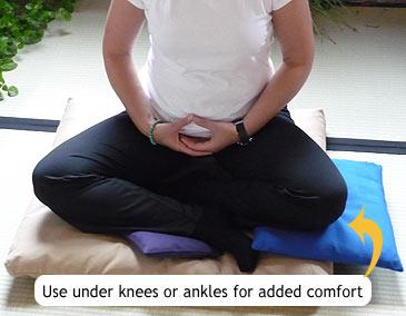 c131-knee