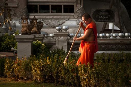 monksweep2